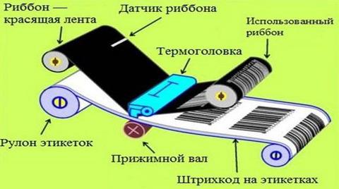 Обслуживание принтеров штрих-кода. Чистка термо головки.