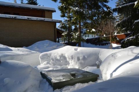 Консервация на зиму