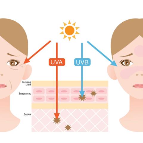 Все о защите SPF, PA и  ++++, лучах типа A и B, UVB и UVA и о старении кожи