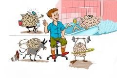 Активность головного мозга. Развитие памяти и Танцующий Стул