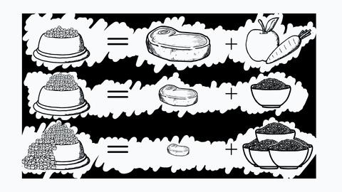 Сухий корм чи домашня їжа?