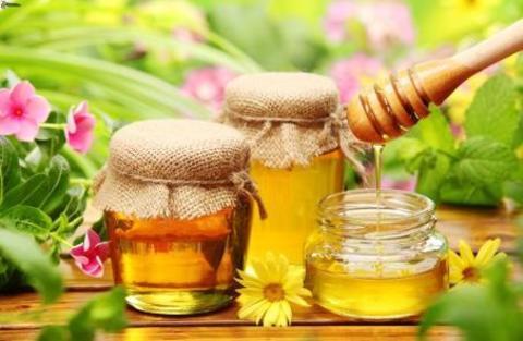 Что нужно знать о мёде?
