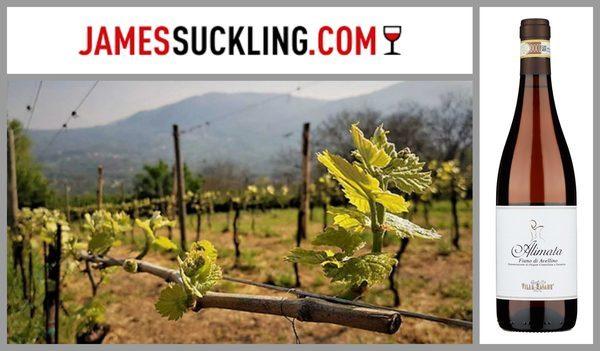Джеймс Саклинг высоко оценил вина Villa Raiano