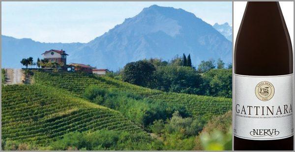 Вино недели с 2 октября - Nervi Gattinara