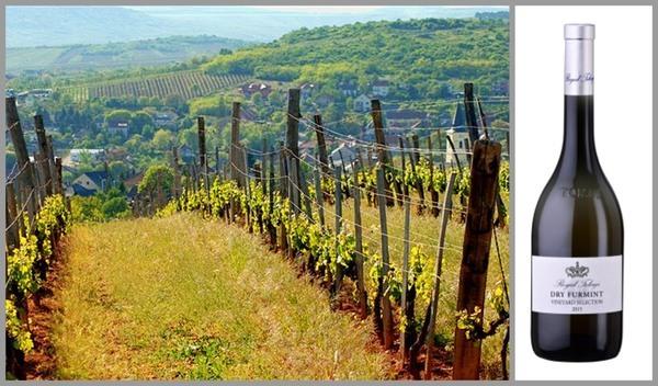 Вино недели с 7 августа - Dry Furmint Vineyard Selection
