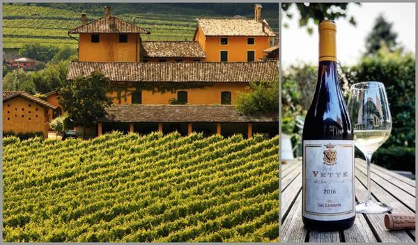 Вино недели с 3 июля - San Leonardo Vette