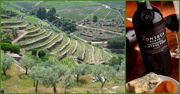 The Wine Advocate оценил Fonseca Guimaraens Vintage Port 2008 в 93 балла