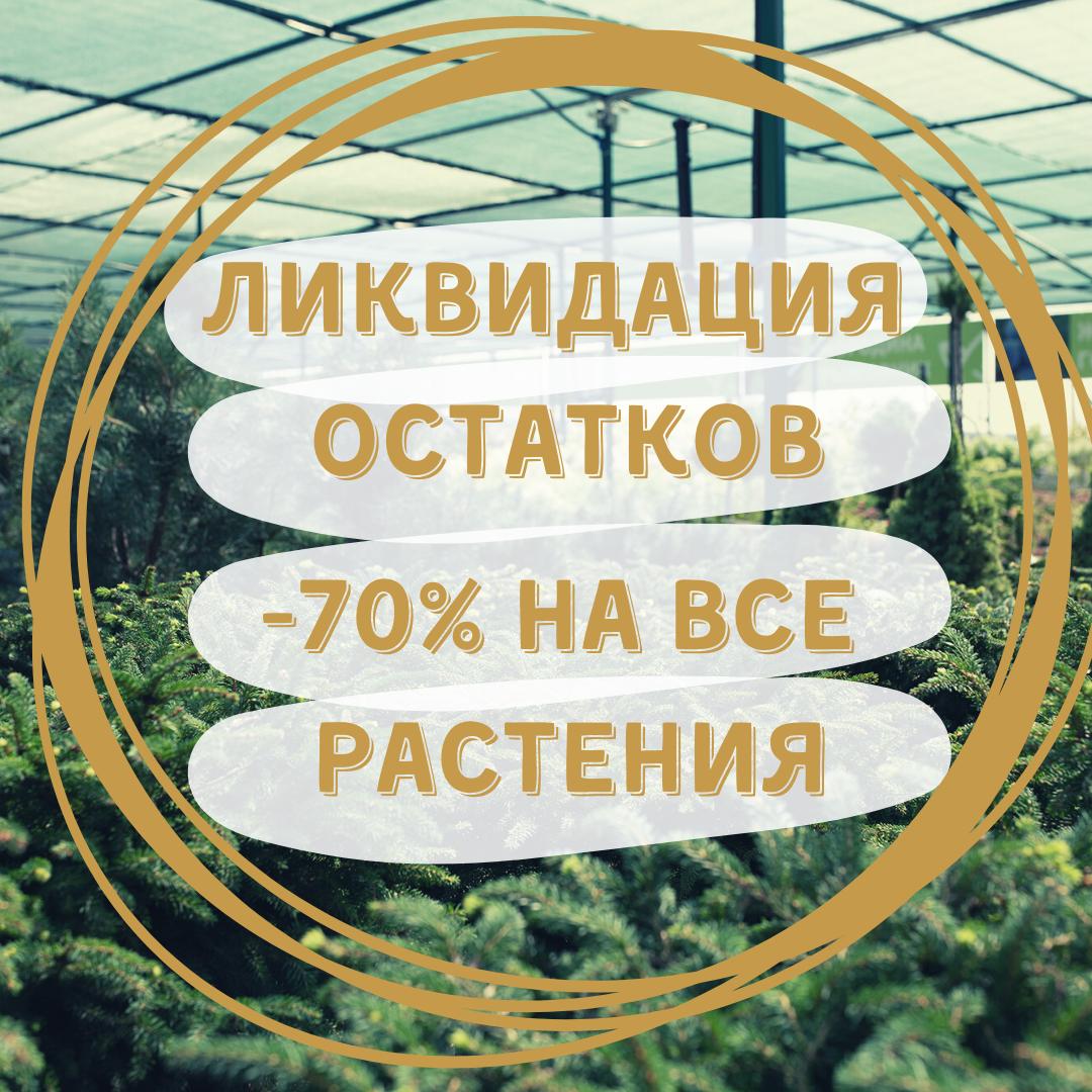 ЛИКВИДАЦИЯ ОСТАТКОВ -70%!!!