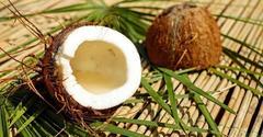 Кокос: вкусная еда и наслаждение для тела.