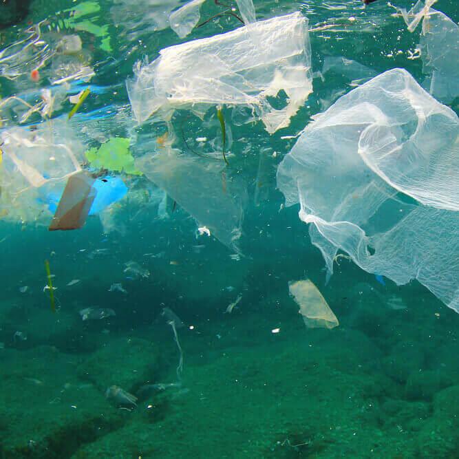 Как решить проблему загрязнения планеты пластиковыми отходами