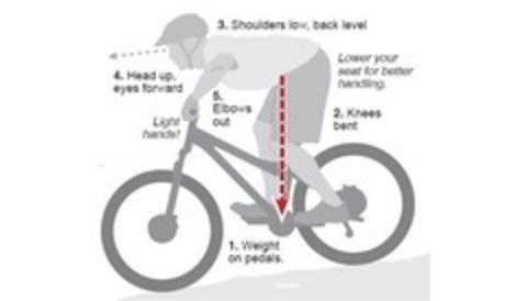 Правильная посадка на велосипеде: Туловище и взгляд