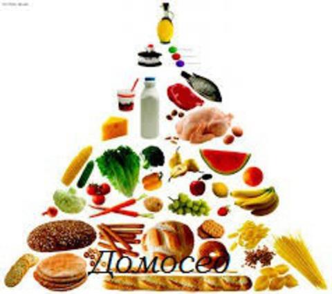 Правильное питание – залог иммунитета и здоровья.