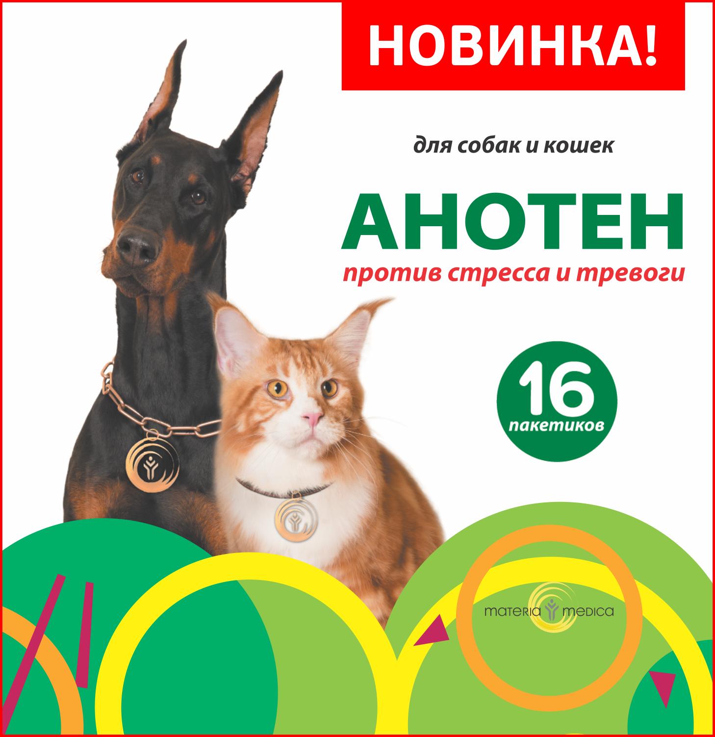 Эксклюзивная новинка на портале - АНОТЕН: против стресса и тревоги у собак и кошек