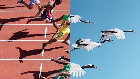 Воплощение олимпийской мечты с OMEGA!