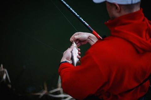 Ловля плотвы на малых озерах перед нерестом