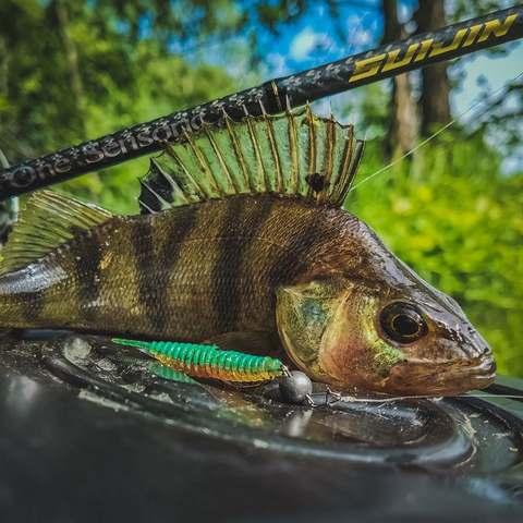 Как ловить микроджигом на реке?