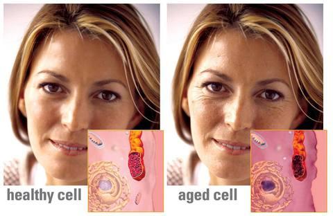 Как омолодить кожу лица?