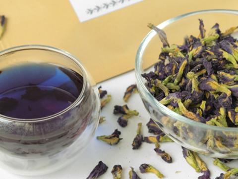 Все, что вы хотели узнать про синий чай Анчан