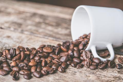 Лучший кофе в зернах для кофемашины: рейтинг сортов фабрики Bravos