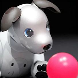 Цена на милую собачку от Sony «кусается»