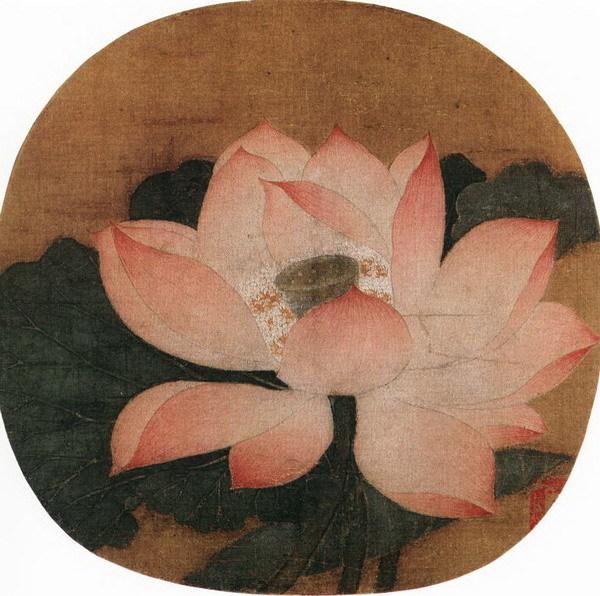 Цветок лотоса - как символ просветления