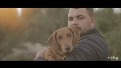 На что готов ветеринар ради собаки? Vetzoo Family