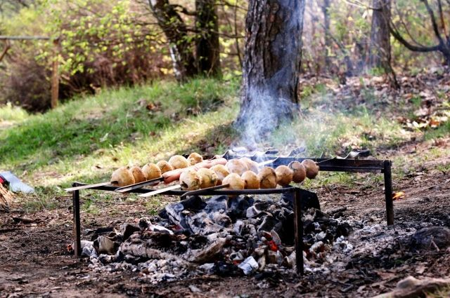 Как весело провести пикник