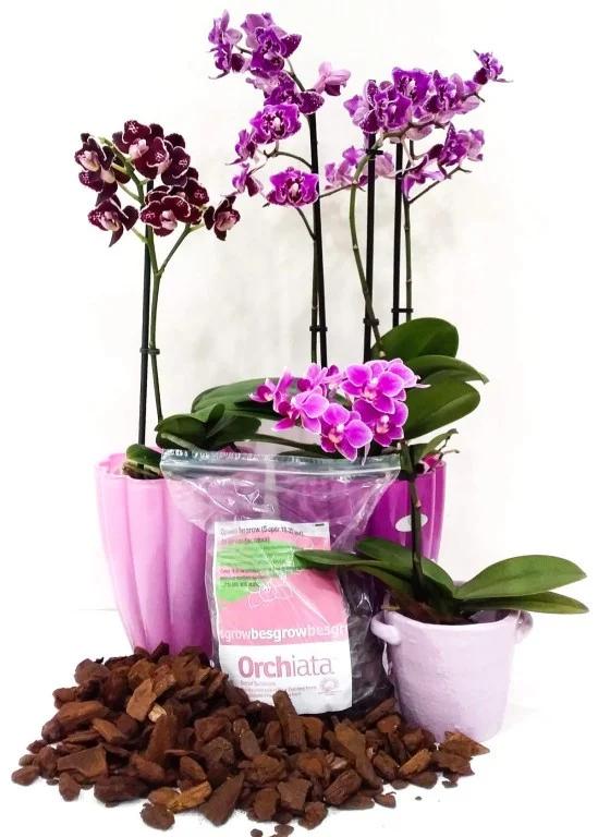 Orhiata для профессионалов и любителей от компания Besgrow из Новой Зеландии.