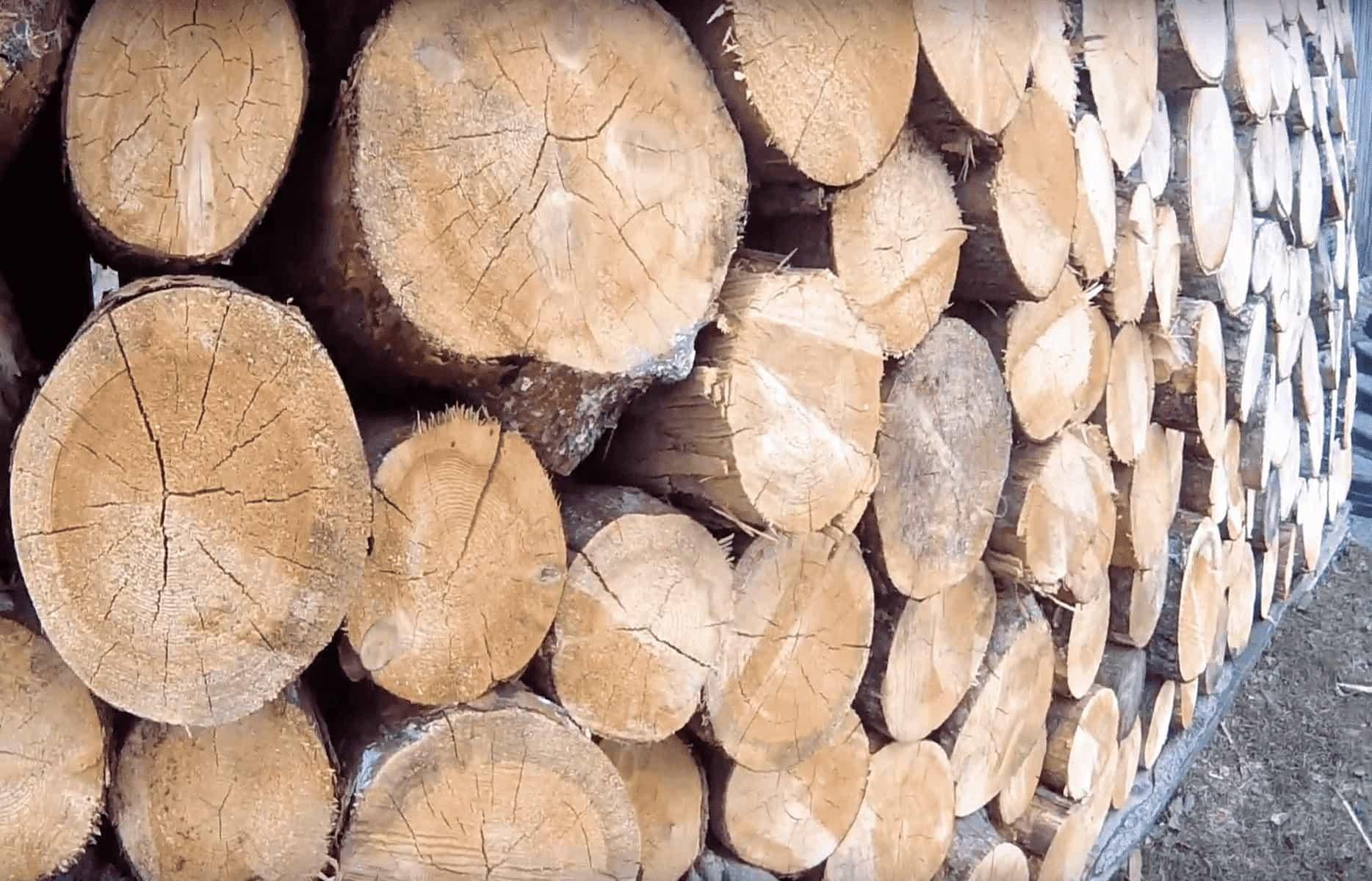 Основные виды дров и их свойства