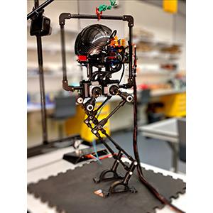Leonardo – универсальный робот