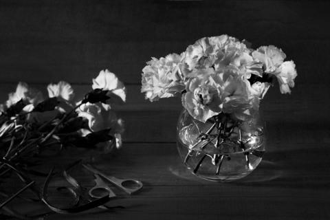 Правильный уход за цветами и букетами
