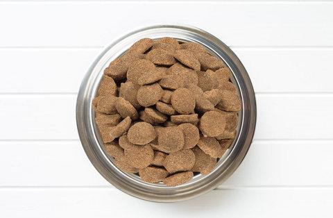 Как правильно хранить сухой корм для собак и кошек?