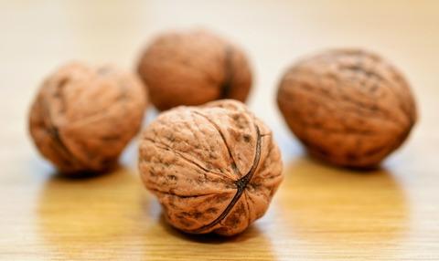 Какая польза орехов для организма