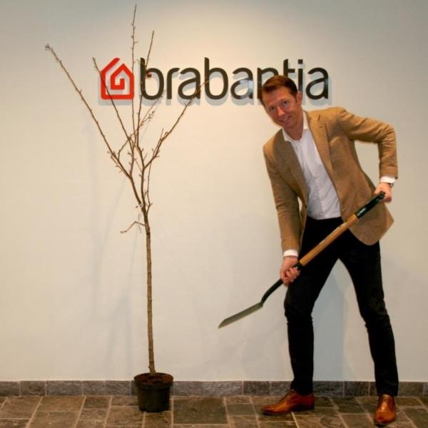 Что стоит за зелеными инициативами Brabantia?