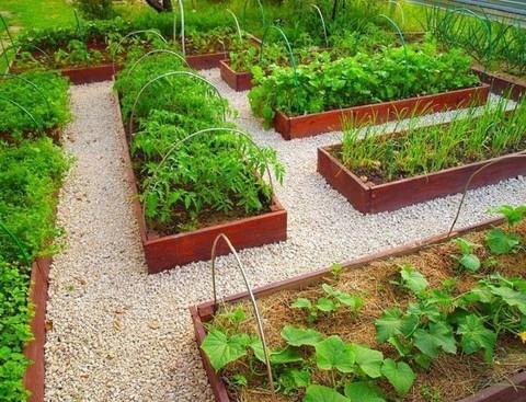 Как сделать аккуратные садовые дорожки без серьезных затрат?
