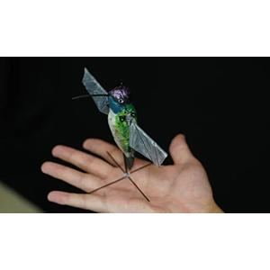 Создан реалистичный робот-колибри