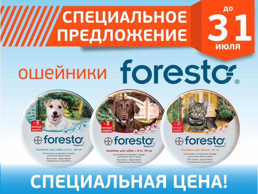 240 дней без клещей и блох: ошейники Foresto по специальной цене!