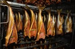 Холодное копчение рыбы: правила и технология копчения