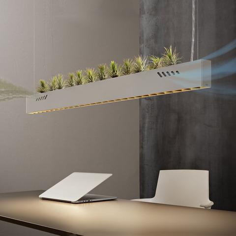 Чистый воздух, яркий свет: новый светильник с функцией дезинфекции Pure BioAir от Olev