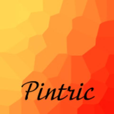 Pintric