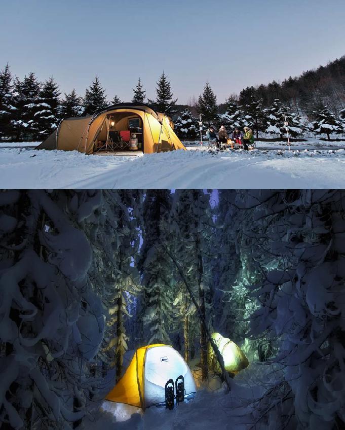 Поход в лес зимой