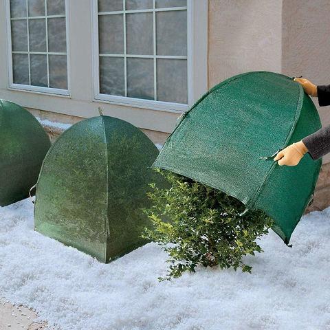 Всё для укрытия на зиму хвойных