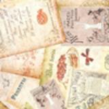 Письма, записи, вырезки