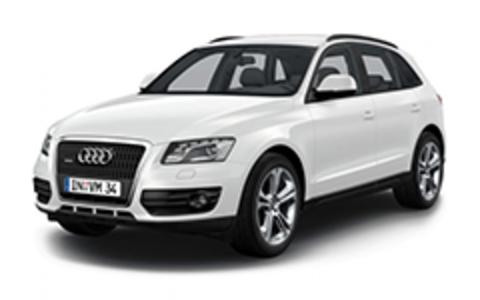 Пороги на Audi Q5 2009-...
