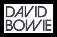 Дискография Дэвида Боуи на виниловых пластинках | Купить в интернет-магазине Collectomania.ru