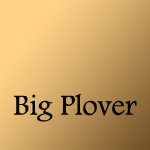 Big Plover