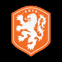 Фигурки футболистов Netherlands | Сборная Голландии