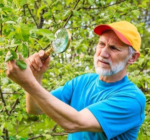 Средства от садовых вредителей