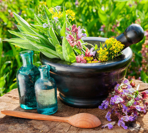 Средства от болезней растений