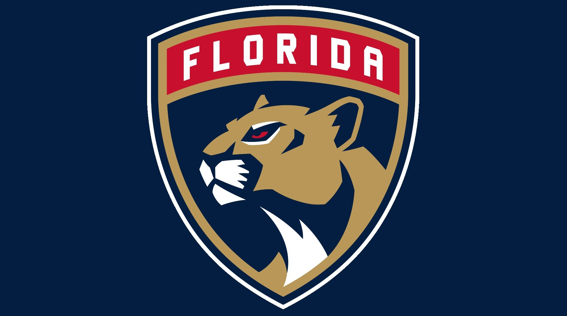 Кепки Флорида синяя (Бейсболки Florida Panthers)